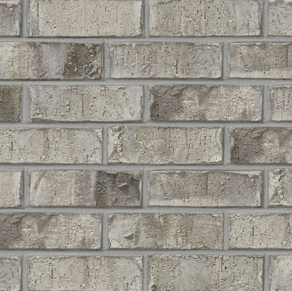 Acme® Brick Denver Cardiff Grey Blend #405 Modular Brick